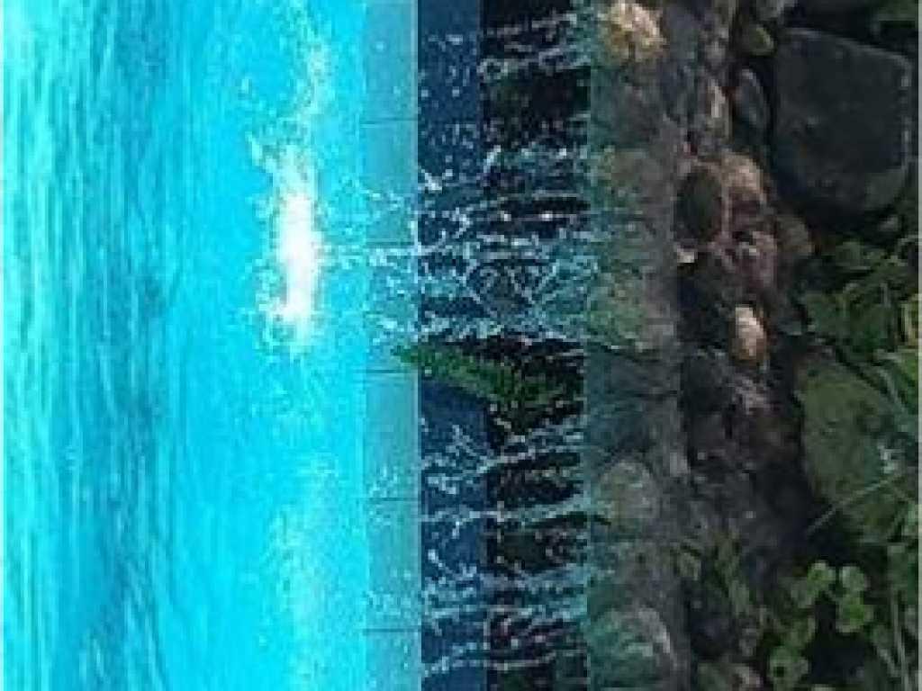Casa com piscina em Cambury