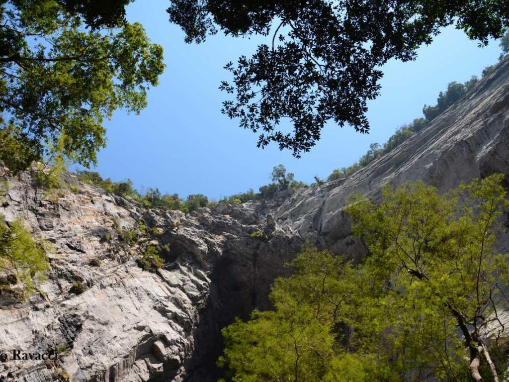 Chácara Petar Parque Turístico Alto do Ribeira em meio a Mata Atlântica de uso exclusivo .