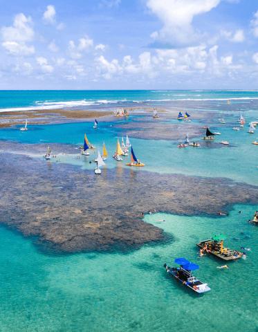 Férias em Recife: o que fazer na capital do Pernambuco