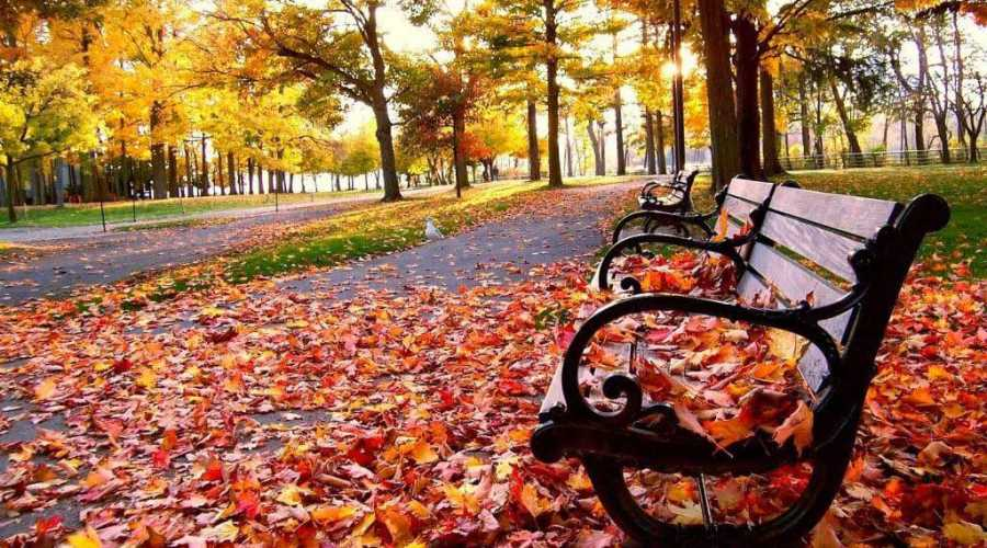 Melhores destinos e passeios para curtir o outono no Brasil